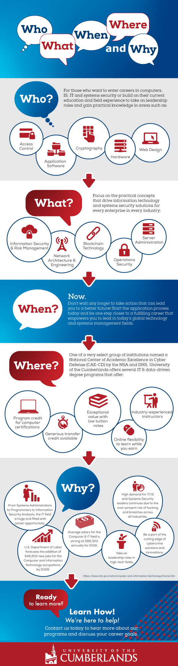 Information Technology infographic that helpyou decide if an IT career is right for you.