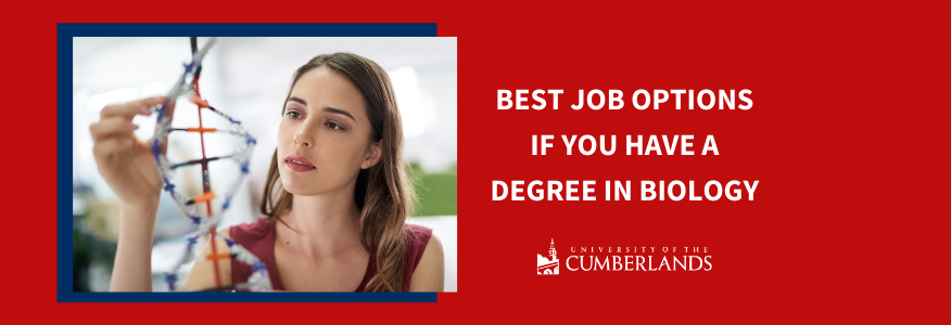 Best Job Options if You Have a Degree in Biology - University of the Cumberlands